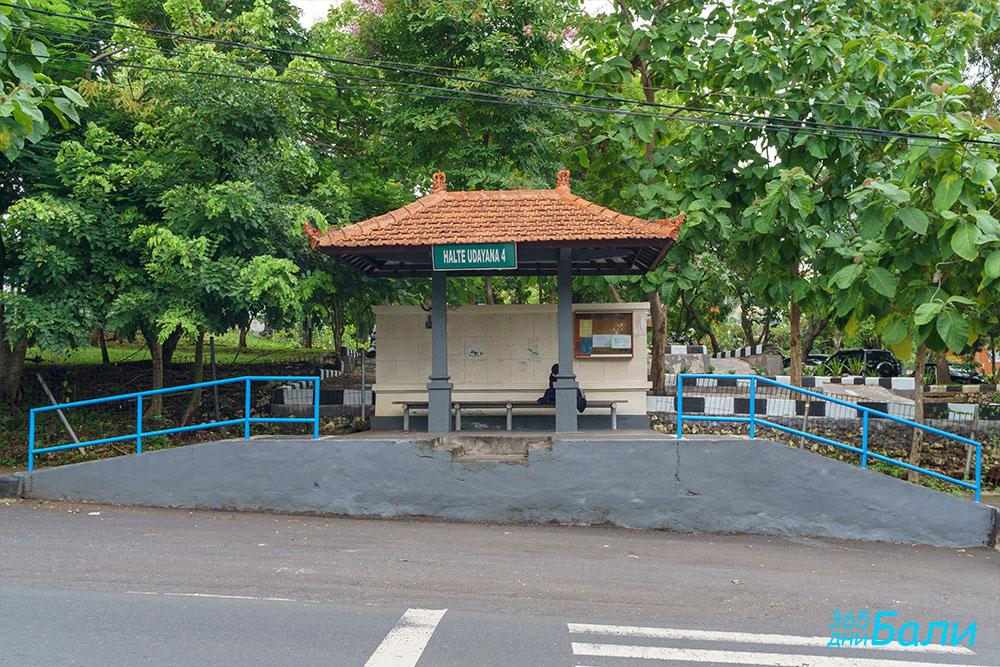 Транспорт в Бали - спирка на градски автобуси